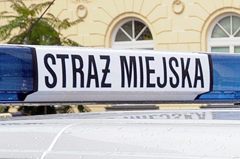 www_strazmiejska_waw_pl